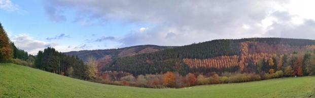 Panoramabild vom Rurtal oberhalb von Hammerr