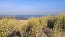 Blick aus den Dünen auf das Meer