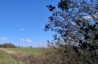 Blick von der Kasterer Höhe hinüber zu den großen Braunkohlekraftwerken bei Grevenbroich