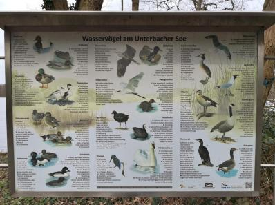 Infotafel am Unterbacher See
