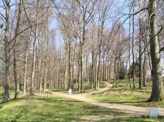 Blick in den Park von Schloss Dyck