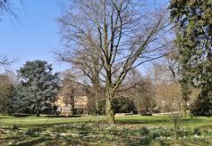 Blick durch den Park auf das Hauptgebäude von Schloss Dyck