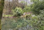 Hübscher Hof mit großem Pfau an der Düssel