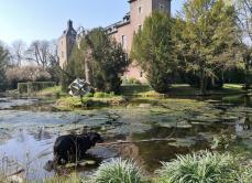 Doxi im Wassergraben vor dem Schloss