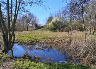Ruine der Kylburg an der Erft bei Eppinghoven