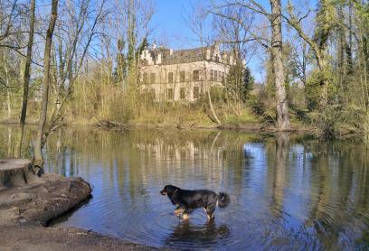 Doxi am See hinter Haus Horst