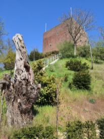 Blick hinauf zum Bergfried auf dem Burgberg