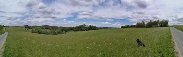Panoramablick vom Wixberg. Am Horizont reicht der Blick bis ins Ruhrgebiet.