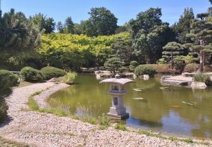Karpfenteich im Japanischen Garten