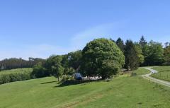 Bauernhof umgeben von Wiesen am Rande des Hohen Molmerts
