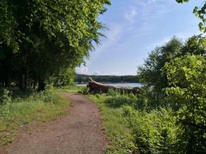 Nur im Bereich des Ortes und unseres Stellplatz kommt man an das Ufer heran