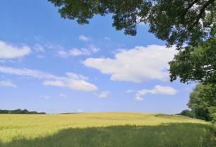Felder im Hinterland der Müritz