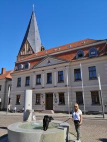 Doxi stärkt sich am Brunnen vor dem Rathaus am Marktplatz, dahinter die St. Nicolai-Kirche