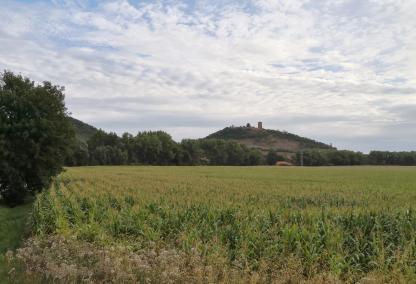 Annäherung an die Gleichenburg von Mühlberg aus