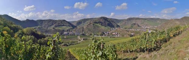 Panoramabild aus den Weinbergen südlich der Ahr bei Mayschoß