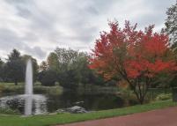 Weiher im Essener Stadtgarten