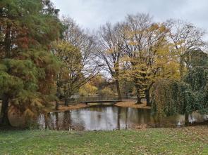 Wasserfläche im Stadtpark Neuss