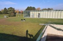 Blick auf das Gartengelände der Langen Foundation