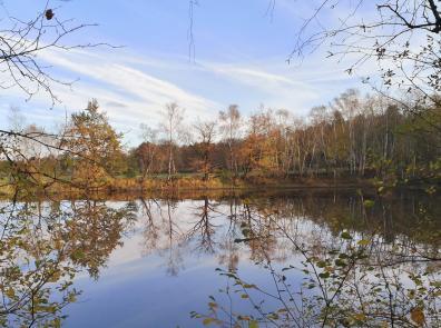 Ich liebe diese Wasserspiegelungen, wie hier am Schwalbensee