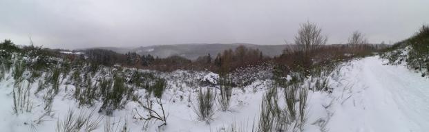 Panoramabild mit Blick von der Hochfläche hinüber zum Rurtal