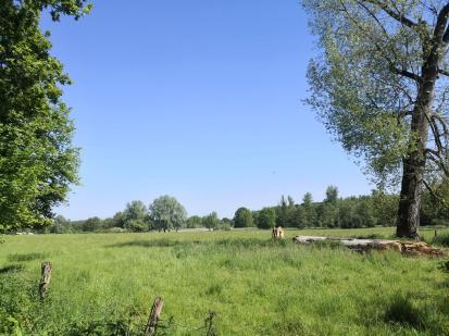 Landschaft im Naturschutzgebiet