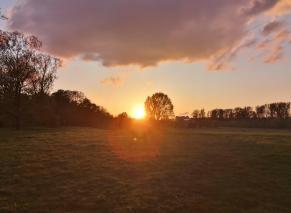 Sonnenuntergang über dem Rheinpark Neuss