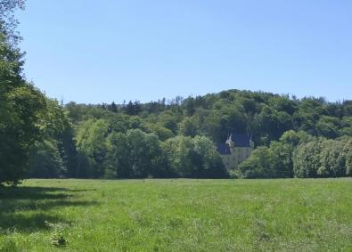 Blick zum Schloss Strauweiler