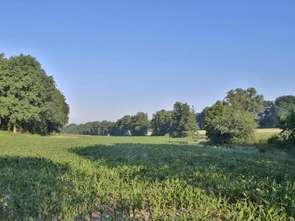 Feldflächen wechseln sich mit Waldabschnitten ab