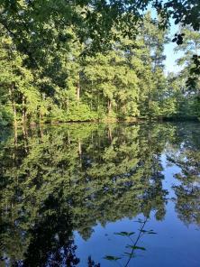 Kleiner Waldsee, ein Stück vom großen Bergsee entfernt