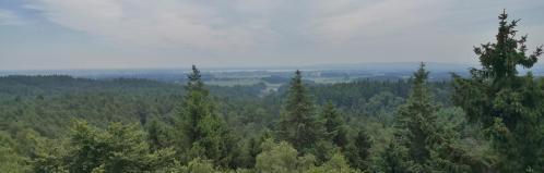 Blick von der Spitze des Aussichtsturms hinüber zum Dümmer See