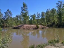 Wasserfläche im Moor