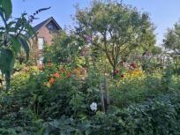 """Hübscher Bauerngarten bei den """"Drei Höfen"""""""