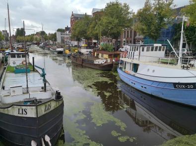 Blick in den Noorderhaven