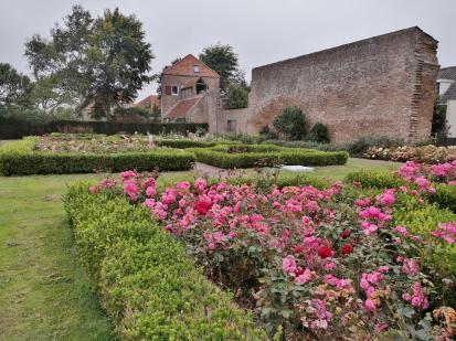 Rosengarten vor der Statmauer