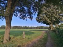 Typische Landschaft des Niederrheins