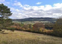 Blick über die offene Fläche nach Süden in Richtung Soonwald