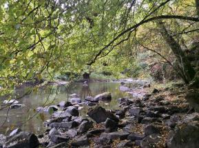 Am Fluß kurz vor Nohen