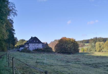 Wir nähern uns der Hammesmühle am Simmernbach