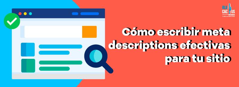 BluCactus Cómo escribir meta descriptions efectivas para tu sitio
