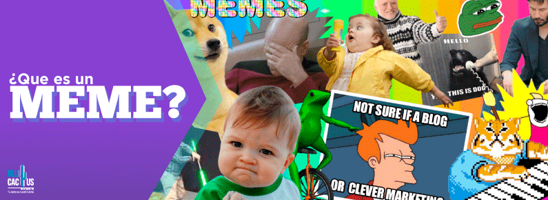 BluCactus Que es un meme