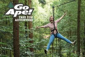Go Ape Sherwood forest