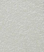 Pale detailed Pitted Wall Finish