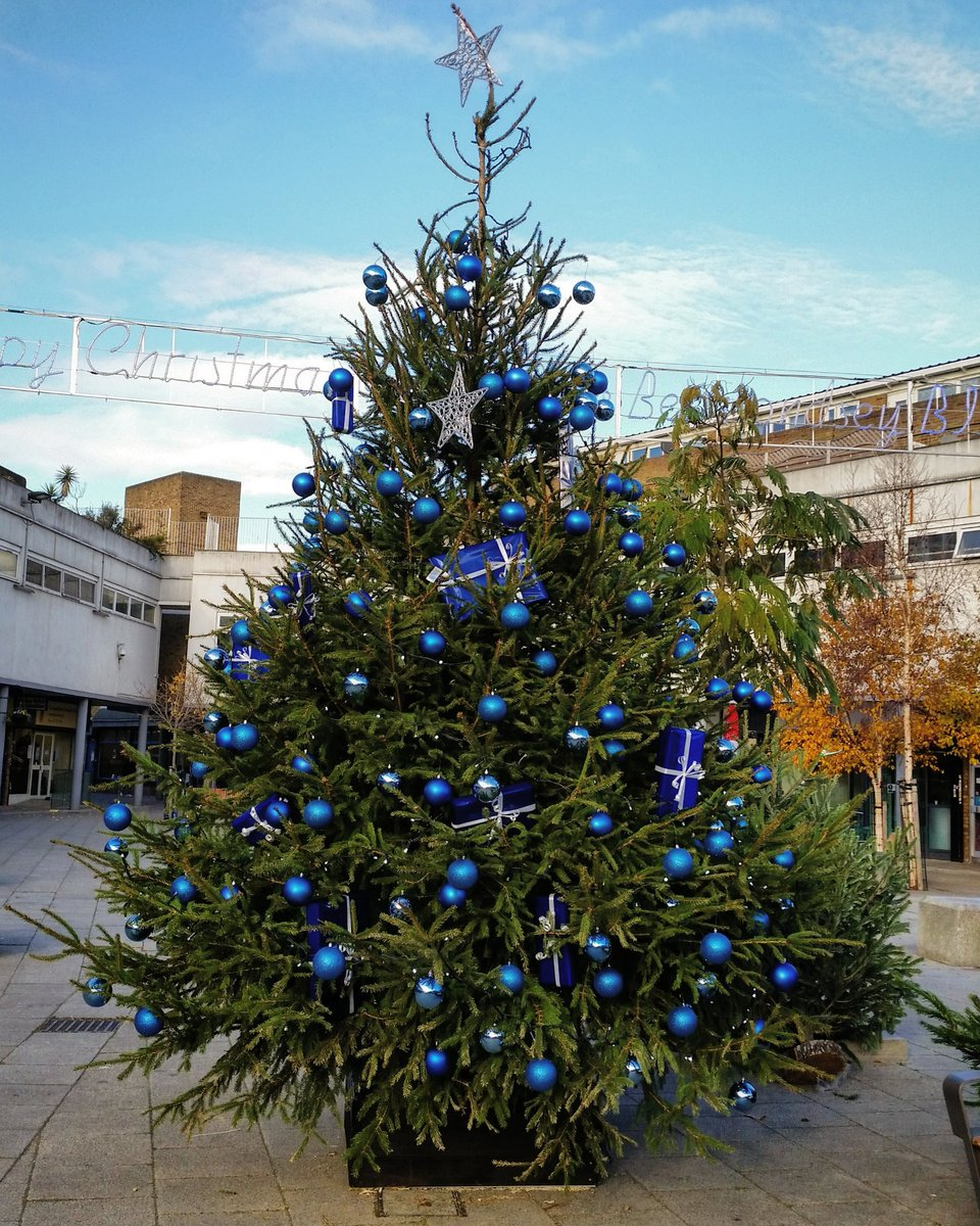 The Blue Christmas Tree at Market Place