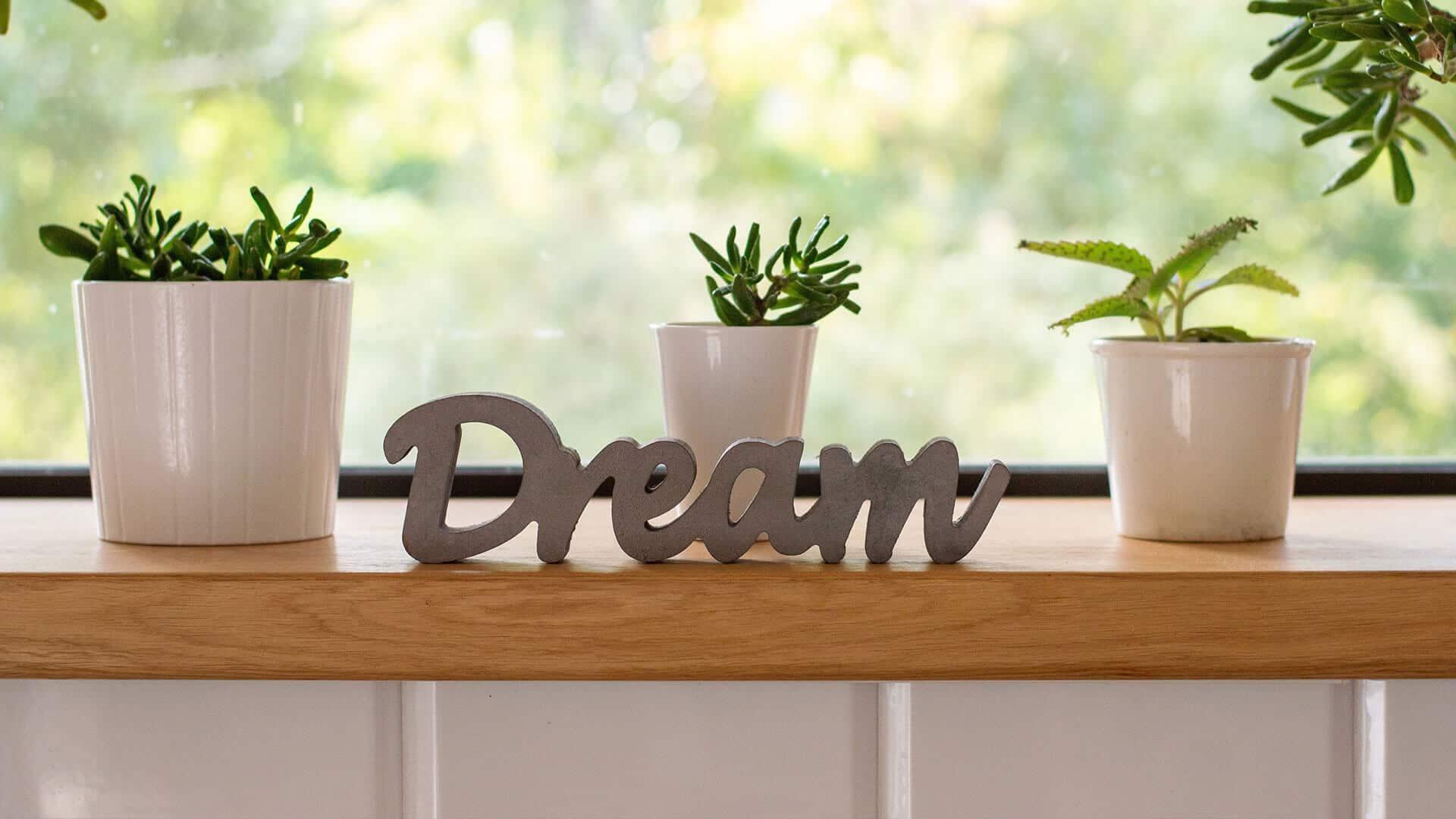 artificial plants decorate dream kitchen