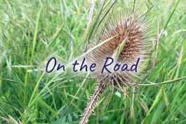 [cml_media_alt id='5030']Blueberry Vegan - On the Road[/cml_media_alt]