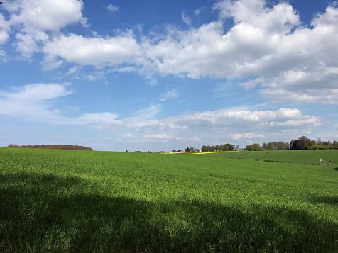 großes Feld