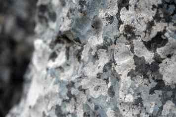 GR 221 Refugi Tossals Verds - Refugi Son Amer (Lluc)_60