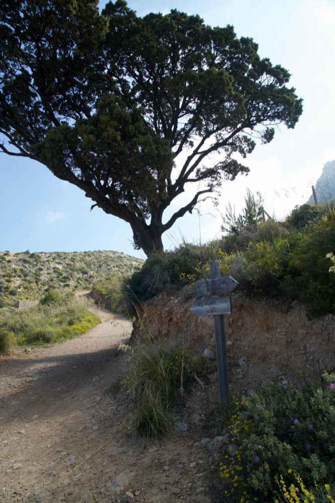 GR 221 Sant Elm - Ses Fontanelles_78