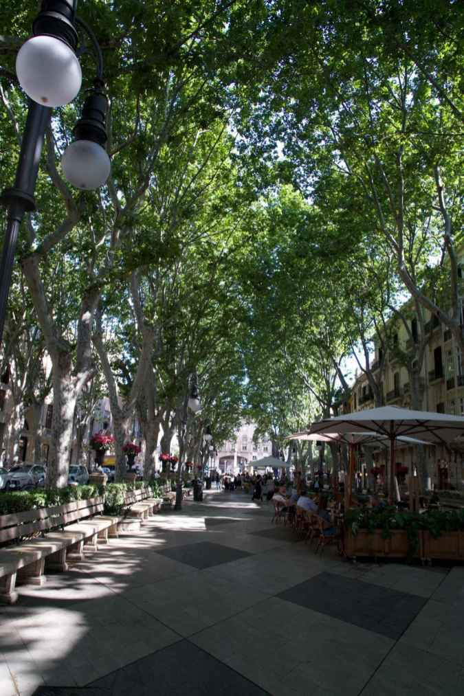 Untervegs in Palma de Mallorca_37