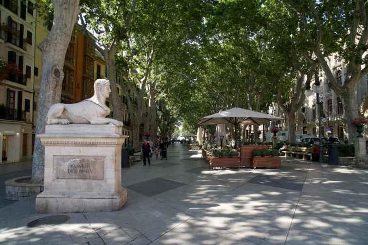 Untervegs in Palma de Mallorca_40